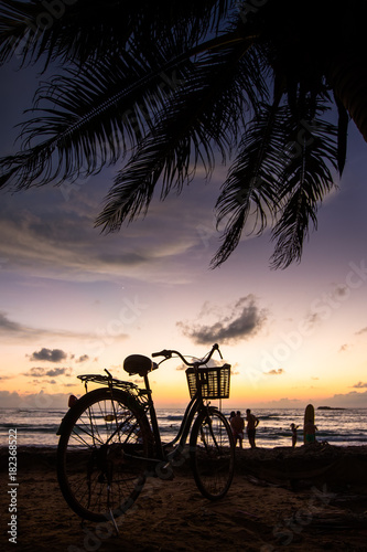 Foto op Canvas Fiets Bicycle on the beach near palm trees and ocean at sunset