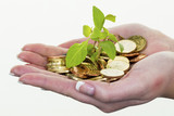 money and plant. save icon photo - 182399159