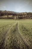 Feldweg Hochformat Retro Look - 182418559