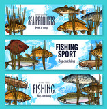 Vector fishes sketch banners fishing sport market - 182420344