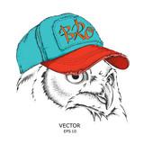 The owl portrait in hip-hop hat. Vector illustration. - 182420363