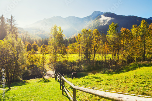 Foto op Aluminium Herfst Green fields and Alps mountains in Austria.