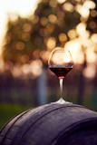 A glass of red wine on an autumn vineyard - 182427130
