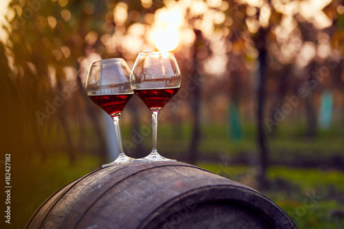 Staande foto Wijngaard Two glasses of red wine in autumn vineyard