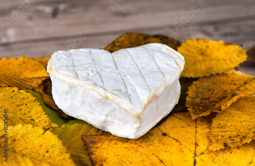 Fototapeta French Neufchatel cheese shaped heart on autumn leaves