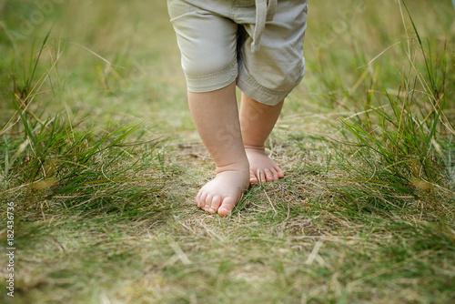 Foto op Aluminium Gras barebood baby