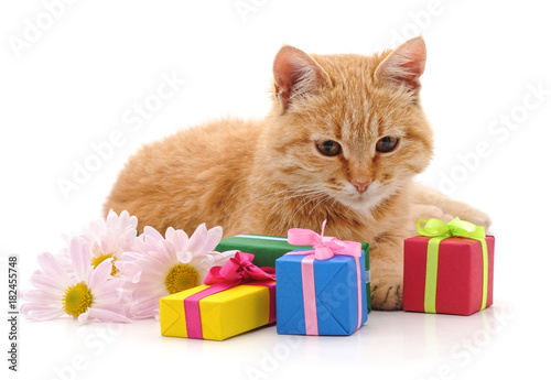 Kitten and gifts.