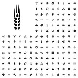 Wheat icon illustration . agriculture icons set for web and mobile. - 182457765