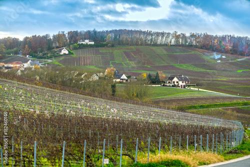 Fridge magnet Moussy, Epernay, Marne, Champagne region, France