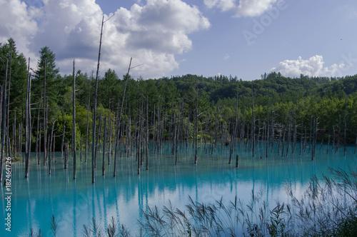 Plexiglas Groen blauw Blue lake, Hokkaido
