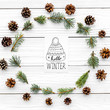 Quadro Hello winter hand lettering with hat icon. Winter pattern with pine cones and spruce branches on white wooden background top view