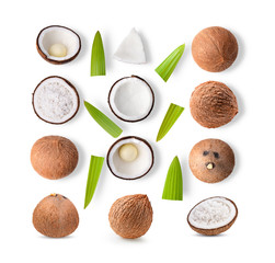 set of coconut on white background