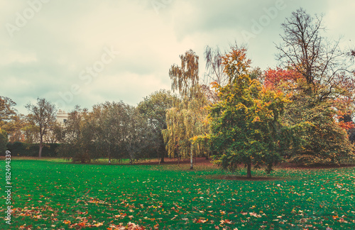 Tuinposter Herfst autumn landscape on the park. autumn background