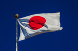 National Flag of Japan with the Red Sun waving in the wind  - 182497503