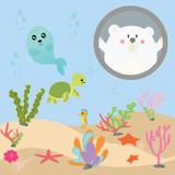 cute sea animal vector set in aquarium