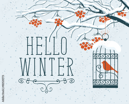 Foto op Plexiglas Wit Vector winter landscape with lettering Hello Winter, with snow-covered branches, and red clusters of Rowan tree. Red bird in a cage hung on a branch in a flat style