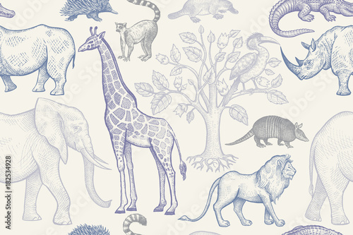 Seamless pattern with animals. - 182534928