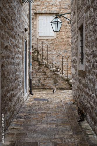 Staande foto Smal steegje montenegro
