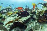 Ship Wreck in bali indonesia indian ocean - 182550577