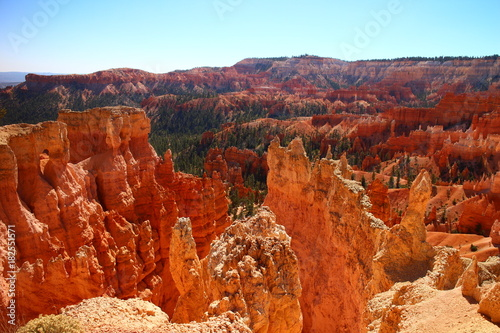 Fotobehang Rood traf. Bryce Canyon Red Rocks and Hoodoos and Trees