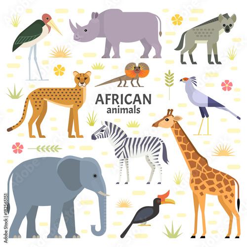 Vector illustration of African animals and birds: elephant, rhino, giraffe, cheetah, zebra, hyena, secretarybird, marabou and frilled-neck lizard, isolated on transparent background.