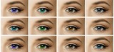 set, collage, different types of color contact lenses. shades of green, brown, blue, gray eyes - 182574993