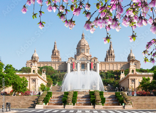 Foto op Canvas Barcelona Square of Spain - National museum of Barcelona with fountain at spring day, Spain