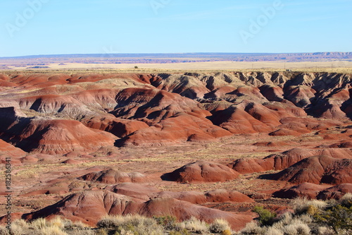 Staande foto Zalm painted desert in petrified forest NP