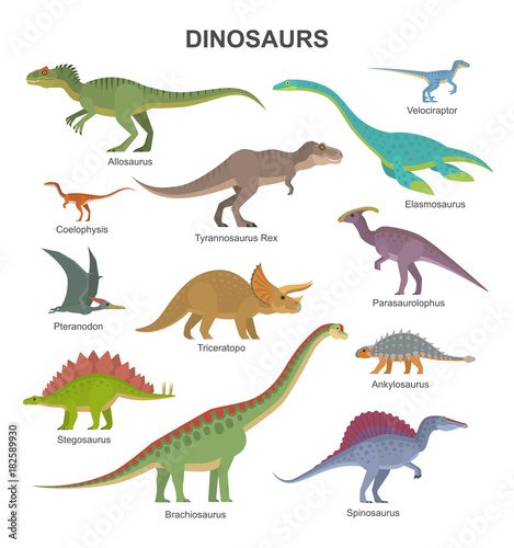 Fototapeta Vector collection of cute flat dinosaurs, including T-rex, Stegosaurus, Velociraptor, Pterodactyl, Brachiosaurus and Triceratop, isolated on white.