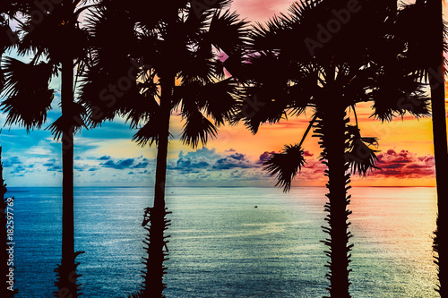 Foto op Canvas Zee zonsondergang Silhouettes of palm trees against the background of exotic sunset