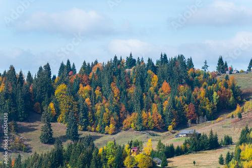 Foto op Aluminium Blauwe hemel Autumn in Carpathian Mountains