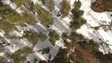 Nieve Flagstaff Arizona  - 182618726
