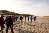 traversée de la baie de Somme - 182618985