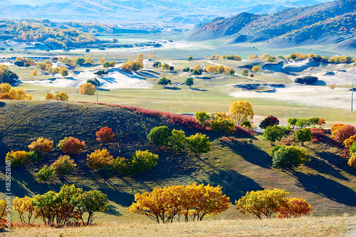 Poster Beige The autumn grassland scenic