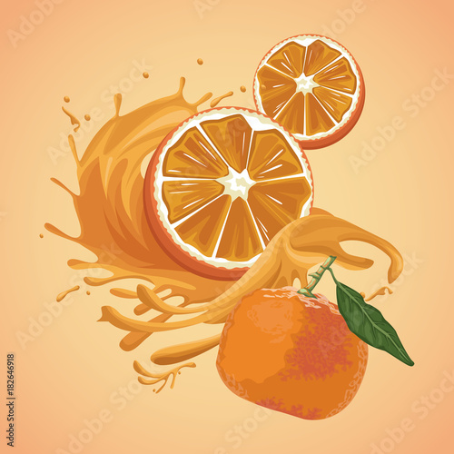 Orange splash fruit icon vector illustration graphic design