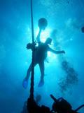 Divers Blue - 182678104