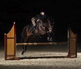 Young female rider on bay horse jumping over hurdle on equestria - 182706529