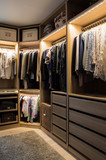 Luxurious walk in closet with lighting and jewelry display. - 182709176