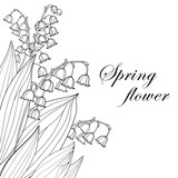 Vector bouquet with outline Lily of the valley or Convallaria flower and leaf in black isolated on white background. Ornate May bells in contour style for spring design, invitation or coloring book.