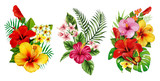 3 in 1, Best HD PNG VINTAGE FLOWER image in one pack 2