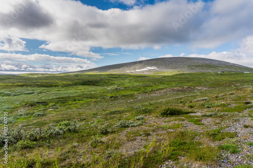 The characteristic landscape of the Arctic tundra in summer, northern Norway