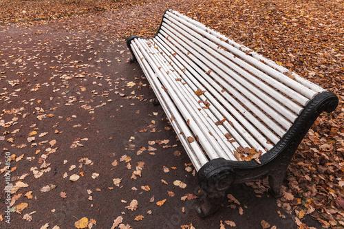Foto op Plexiglas Herfst White wooden bench stands in autumn park