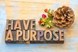 Have a purpose advice - 182763103