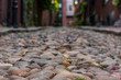 Narrow Cobble Stone Walkway