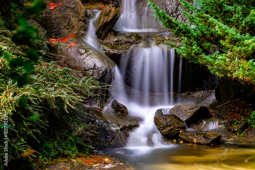 cascading waterfall with autumn leaves on the rock - 182792531