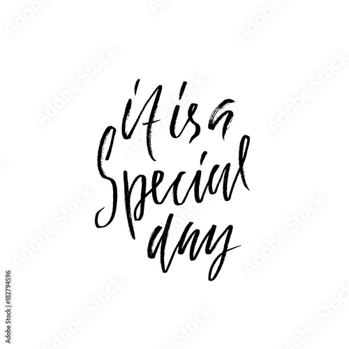 Fototapeta It is a special day. Inspirational lettering design. Handdrawm modern dry brush calligraphy isolated on a white background. Vector illustration.