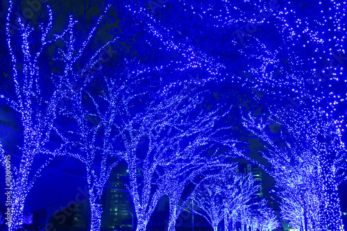 Foto op Canvas Violet クリスマスイルミネーション