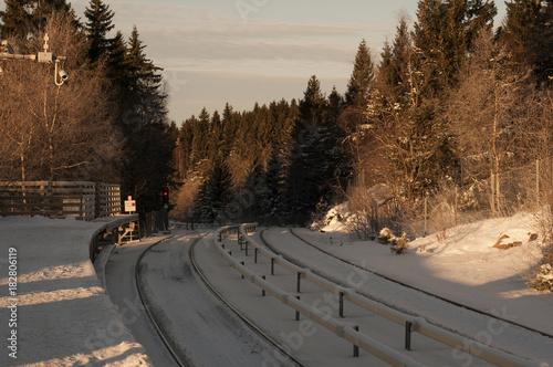 Tuinposter Spoorlijn Winter railroad
