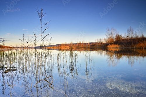 Clear Calm Lake with Reeds in the Warm Light of the Rising Sun Poster