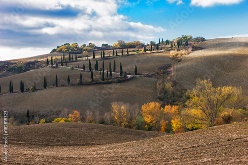Staande foto Toscane Tuscany road with cypress trees, Val d'Orcia, Italy. Light and shadow in nature, Spectacular views.Very nice view of the autumn Tuscan field with cypresses in the sunlight.Autumn landscape of Tuscany.